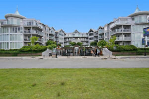 Lake View - Fully Furnished 2Bed 2Bath Apartment