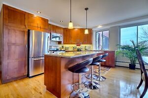 Large 3½, Furnished All incl., Downtown, Parking, Monthly Rental
