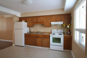 Bright Spacious Fully Renovated Townhome in Town of Alvinston