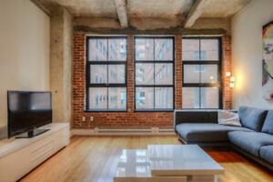 1 bedroom FURNISHED NYC loft style brick wall downtown