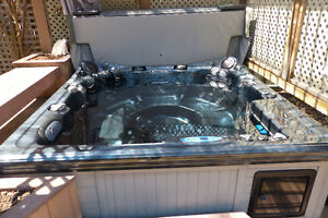 Barely Used Dynasty Spa