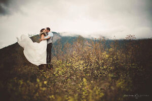 Ivy and Aster 2016 wedding dress