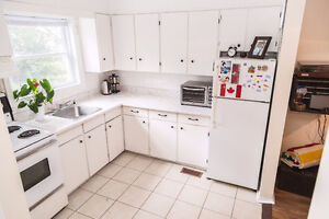 LARGE 1 BRIGHT BEDROOM Apart. in Westboro available now