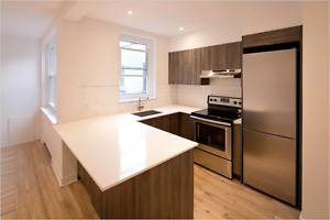 Newly renovated 1 bedroom apartment steps from Atwater Metro!