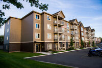 2 BEDROOMS LUXURIOUS - 1309 MOUNTAIN ROAD - $995 PER