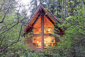 Mt. Baker Lodging - Cabin #4 - HOT TUB, BBQ, PETS OK, SLEEPS-5!