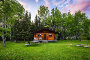 1 bedroom log home
