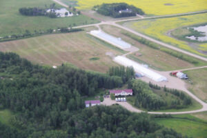 Breeder Farm for Sale on 89 Acres - 1 Mile East of Russell, MB!