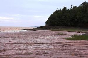 61.5 acres WATERFRONT New Brunswick! For sale/trade! Oceanfront! Kingston Kingston Area image 7
