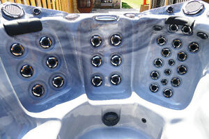 2014 DYNASTY SPA HOT TUB SAVE THOUSANDS OVER NEW!!!