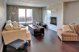 BRAND NEW REDESIGNED SUITES!!!! London Ontario image 7