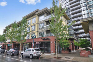 Coquitlam Centre Unfurnished 1 Bed Top(4th) Floor Unit for Rent!