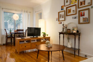 Furnished 2 Bedrooms Apt Downtown, Sublet Jan-May 1900$