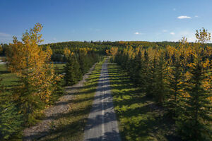 Stunning private parcel of land just behind Spruce Meadows