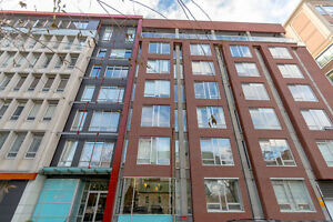 Immaculate Fully Furnished Downtown Condo