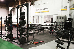 LEARN TO WORKOUT SO YOU CAN BE CONFIDENT IN THE GYM!! Kitchener / Waterloo Kitchener Area image 8