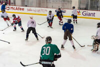 Adult Rec. Ice Hockey Players Southdale CC Wanted All Year