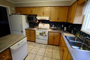 Kitchen Cabinets-Complete Set, Bleached Maple, Very Good Cond. Kitchener / Waterloo Kitchener Area image 4