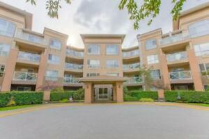 305 2559 PARKVIEW LANE Port Coquitlam, British Columbia