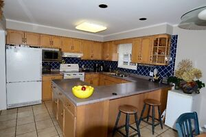 Kitchen Cabinets-Complete Set, Bleached Maple, Very Good Cond. Kitchener / Waterloo Kitchener Area image 7