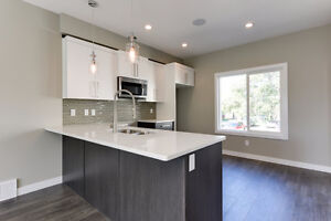 Absolutely Gorgeous and Affordable New Townhomes In Edmonton