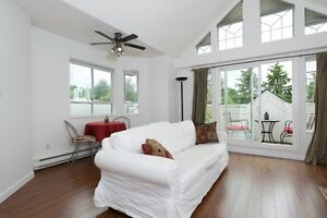 NEWLY RENOVATED TWO BEDROOM PENTHOUSE CONDO