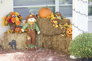 Small Square Hay Bales Decoration