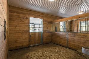 Indoor & Outdoor Horse Board at BEAUTIFUL Sky Haven Equestrian Peterborough Peterborough Area image 4