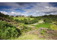 Agricultural/pasture land or woodland wanted by private buyer.