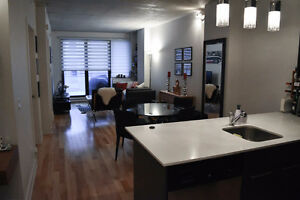 Beautiful 3 1/2 Condo for Rent @ Imperial Lofts in St-Henri