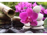 Traditional Chinese Medicine Massage(Tui Na), Hot oil Deep tissue massage, Acupressure, Wet Cupping