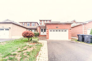 Brampton- For Rent-Detached Whole House -Bovaird/Hurontario