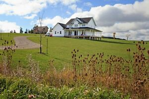 Beautiful Country Home on 10 acres OPEN HOUSE October 30, 2016