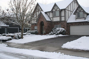 Residential Snow Removal Shovelling Services In Cambridge Cambridge Kitchener Area image 3