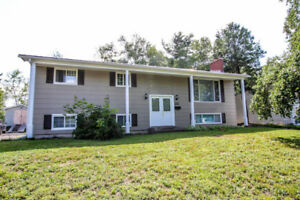 Large split-entry home in Southwood Park with income helper!