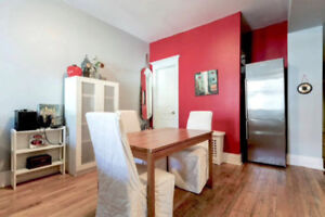 Beautiful, Spacious 2-bedroom Apartment in the Plateau