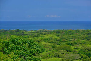 Costa Rica (Lot Only) in Gated Community, 1 1/4 Ac Ocean View
