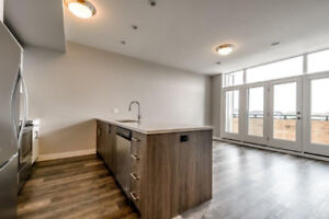 Brand New Luxury North London 2 + 1 Bedroom Rental