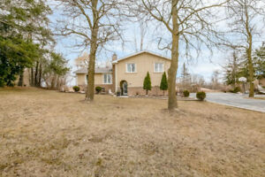 13619 Centreville Creek Road, Caledon