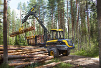 experienced Forwarder looking for work