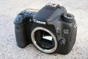 Canon 70d with Sigma Zoom Lens