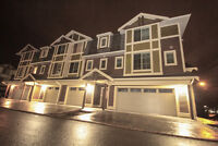 "$125 /3br - ""Fine Furnished Super Suites In Centrefield"" NEW2015"