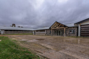 SOLD Prime Dairy Farm in Ingersoll.Jersey Herd, Storage+2 Homes! London Ontario image 2