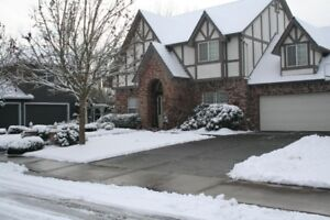 residential snow removal / driveways and sidewalks