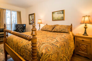 Another Queen Comforter with Bed Skirt and set of Pillow Shams.