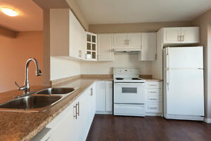 1 Bedroom Near Fanshawe College London Ontario image 1