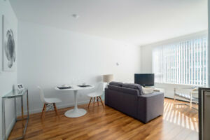 STUNNING Modern/Contemporary FURNISHED 1BR - Incl Internet/Cable