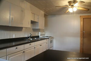Pet Friendly - Newly Renovated 2 Bedroom Basement Suite