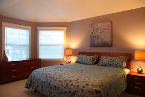 Executive Fully Furnished House in Clayton Park West