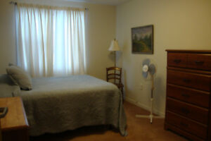 Available Feb 1, Clayton Park Quiet Rm, 295 Lacewood Dr, Central